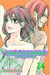 Kimi Ni Todoke GN Vol. 14 From Me To You