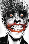 Absolute Batman the Black Mirror HC