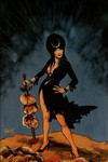 Elvira Mistress of Dark #4 (Retailer 20 Copy Incentive Variant)