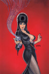 Elvira Mistress of Dark #4 (Retailer 25 Copy Incentive Variant)