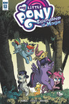 My Little Pony Friendship Is Magic #53 (Retailer 10 Copy Incentive Variant Cover Edition)