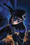 Nightwing #60 (Louw Variant)