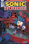 Sonic the Hedgehog #17 (Cover A - Lawrence)