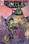 Teenage Mutant Ninja Turtles Universe #24 (Cover B - Tunica)