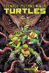 Teenage Mutant Ninja Turtles Dimension X TPB