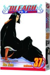 Bleach TPB Vol. 37