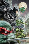 Batman Teenage Mutant Ninja Turtles Deluxe Edition HC