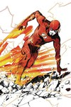 Flash #82 (Variant) (YOTV)