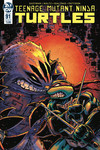 Teenage Mutant Ninja Turtles Ongoing #91 (Cover B - Eastman)