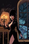 Elvira Mistress of Dark #9 (Retailer 10 Copy Incentive Variant)