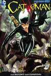 Catwoman TPB Vol. 3 Death Of The Family
