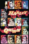 Harley Quinn a Rogues Gallery the Deluxe Cover Art Coll HC
