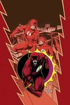 Flash by Mark Waid TPB Book 01