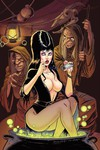 Elvira Mistress of Dark #10 (Retailer 25 Copy Incentive Variant)