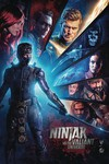 Ninjak vs The Valiant Universe #1 (of 4) (Cover C - Photo)