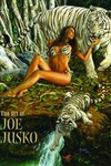 Art Of Joe Jusko HC